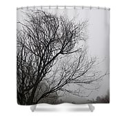 Dreamer Tree Shower Curtain
