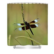 Dreaming Dragonfly Shower Curtain
