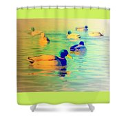 Ducks Dreaming Of Dreaming Ducks  Shower Curtain