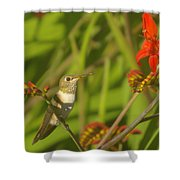 Dreaming In The Nectar Shower Curtain