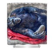 Dreaming Of Bananas Chimpanzee Shower Curtain