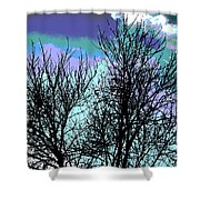 Dreaming Of Spring Through Icy Trees Shower Curtain