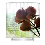 Dreams In Roses - Bokeh Hearts Shower Curtain