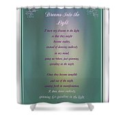 Dreams Into The Light Shower Curtain