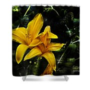Dreams Of A Day Lily Shower Curtain