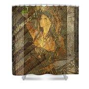 Dreams Of Absinthe - Steampunk Shower Curtain