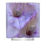 Dreams Of Purple Gladiola Flowers Shower Curtain by Jennie Marie Schell