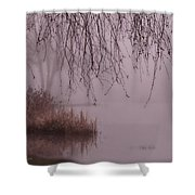 Dreams Of The Heart Shower Curtain