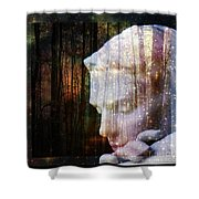 Of Lucid Dreams / Dreamscape 4 Shower Curtain