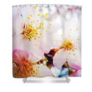Dreamy Blossom Shower Curtain