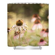 Dreamy Coneflowers Shower Curtain