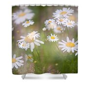 Dreamy Daisies On Summer Meadow Shower Curtain