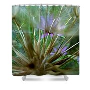 Dreamy Fairy Wishes  Shower Curtain