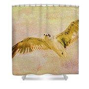 Dreamy Flight Shower Curtain by Deborah Benoit
