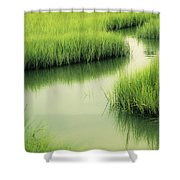 Dreamy Marshland Shower Curtain