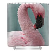 Dreamy Pink Flamingo Shower Curtain