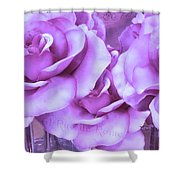 Dreamy Shabby Chic Purple Lavender Paris Roses - Dreamy Lavender Roses Cottage Floral Art Shower Curtain