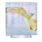 Dreamy Soft Seagull Shower Curtain