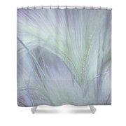 Dreamy Softness. Pastel Grasses Shower Curtain