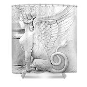 Dreamy Sphinx Shower Curtain