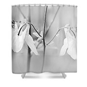 Dreamy Spring Shower Curtain