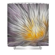 Dreamy Waterlily Shower Curtain