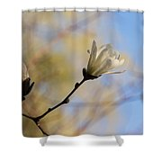 Dreamy Wild Magnolia In The Forest Shower Curtain