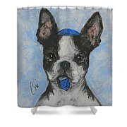 Dreideler Shower Curtain