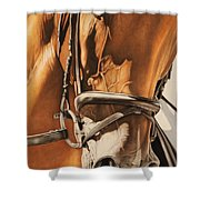 Dressage And Details Shower Curtain