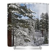 Distant Peak Shower Curtain