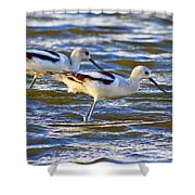 Dribbling Contest Shower Curtain