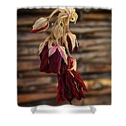 Dried Floral Shower Curtain