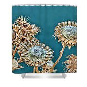 Dried Flowers Shower Curtain