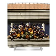 Dried Flowers And Atichoke Spray Shower Curtain