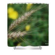 Dried Grass In Soft Focus Shower Curtain