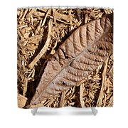 Dried Leaf Shower Curtain