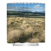 Dried Shrubs In Late Winter Carrizo Shower Curtain