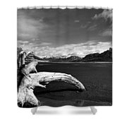 Drift For A While  Shower Curtain