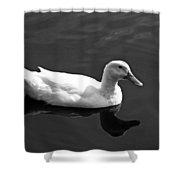 Driftin' Duck - Bw Shower Curtain