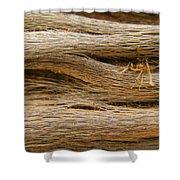 Driftwood 1 Shower Curtain by Adam Romanowicz