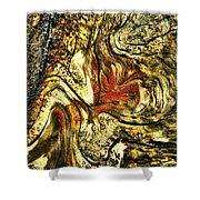 Driftwood 4 Shower Curtain