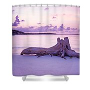 Driftwood At Sunset Shower Curtain