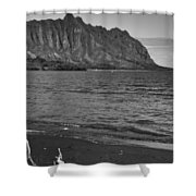 Driftwood-black And White Shower Curtain