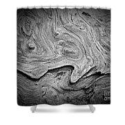 Driftwood Butte Bw 2 Shower Curtain