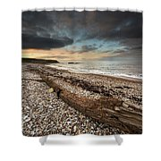 Driftwood Laying On The Gravel Beach Shower Curtain