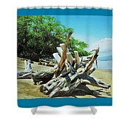 Driftwood On A Maui Beach Shower Curtain