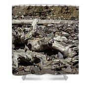 Driftwood Mt. Rainier  Shower Curtain