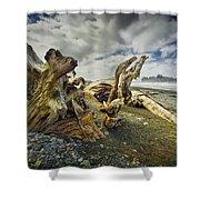 Driftwood On Rialto Beach Shower Curtain