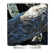 Driftwood Texture And Shadows Shower Curtain
