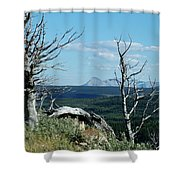 Gnarled Trees And Divide Mountain Shower Curtain